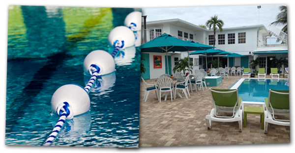 Dine, Drink and Swim at the Florida Keys Premier swim club.